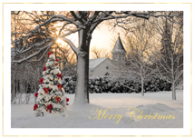 Morning Celebration Christmas Cards